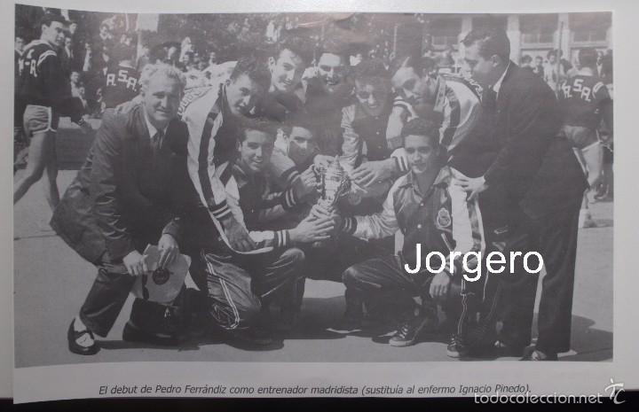 R. MADRID BALONCESTO. EL DEBUT DE PEDRO FERRÁNDIZ. RECORTE (Coleccionismo Deportivo - Carteles otros Deportes)