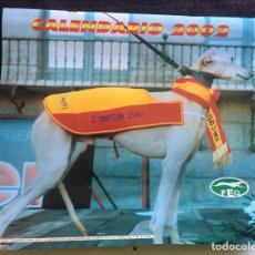 Coleccionismo deportivo: CALENDARIO 2000 FEDERACIÓN ESPAÑOLA DE GALGOS , 35X29 CM.. Lote 257280715