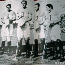 Coleccionismo deportivo: LAMINA POLO ARGENTINA 1966 COPA DE LAS AMERICA CAMPIONES DORIGNAC-HARRIOT..... Lote 262064715
