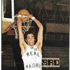 Coleccionismo deportivo: REAL MADRID BALONCESTO ( BASKET ): RECORTE DE RAFAEL RULLÁN. 1975. Lote 277843738