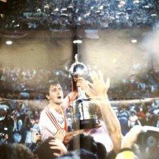 Coleccionismo deportivo: RIVER ALONSO POSTER CAMPEON COPA LIBERTADORES 1986. Lote 288935013