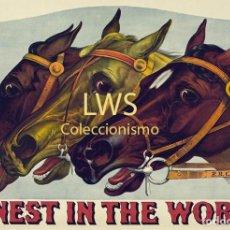 Coleccionismo deportivo: FINEST IN THE WORLD - IMÁGENES CABALLERÍA - CABALLOS - EQUITACIÓN - HÍPICA. Lote 295737768