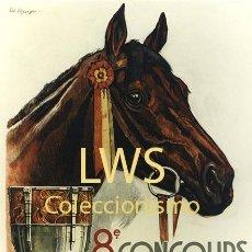 Coleccionismo deportivo: GENÈVE CONCOURS HIPPIQUE 1938 - IMÁGENES CABALLERÍA - CABALLOS - EQUITACIÓN - HÍPICA. Lote 295738253