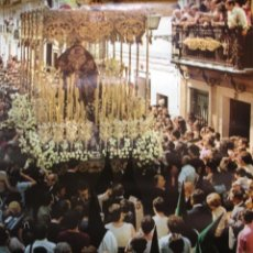 Carteles Feria: CARTEL SEMANA SANTA SEVILLA 1981. Lote 32390213