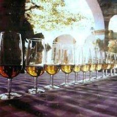 Carteles Feria: CARTEL SANLUCAR BARRAMEDA, FERIA MANZANILLA.1977. 56X82. Lote 35356219