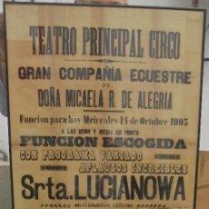 Carteles Feria: CADIZ. TEATRO PRINCIPAL CIRCO. 1903. MICAELA R.DE ALEGRIA, LUCIANOWA, JOCKEY D'EPSON. 155 X 65CM. Lote 121315923
