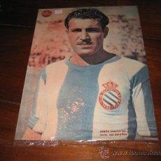 Coleccionismo deportivo: JORGE INTERIOR DERECHA DEL ESPAÑOL LAMINA DEL MARCA. Lote 11450835
