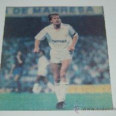 Colecionismo desportivo: REAL MADRID : RECORTE DE BERND SCHUSTER. 1988. Lote 12704962