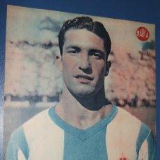 Coleccionismo deportivo: LAMINA POSTER DEL RCD ESPAÑOL ESPANYOL JUGADOR TERUEL DEFENSA DERECHA DIARIO MARCA FUTBOL. Lote 22812189