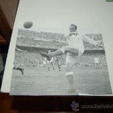 Coleccionismo deportivo: REAL MADRID: RECORTE DE DI STEFANO. Lote 27429532