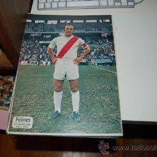 Coleccionismo deportivo: AD. RAYO VALLECANO: PÓSTER DE FELINES. TEMPORADA 76-77. Lote 32188194