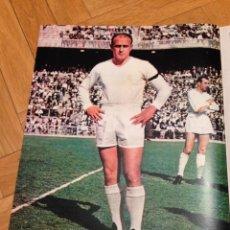 Coleccionismo deportivo: POSTER CARTEL ALFREDO DI STEFANO REAL MADRID AÑOS 70. Lote 46179768