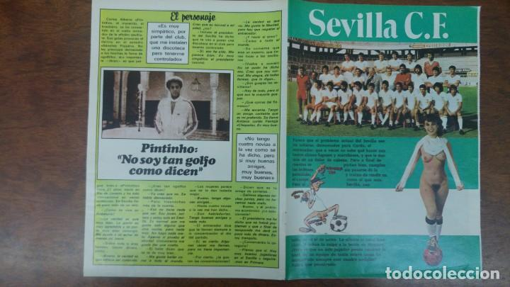 Coleccionismo deportivo: POSTER SEVILLA C.F AÑO 1982 MEDIDAS 4250 X 60 CM DESNUDO PINTINHO LOPEZ MONTERO BUYO PACO SAN JOSE - Foto 5 - 137234466