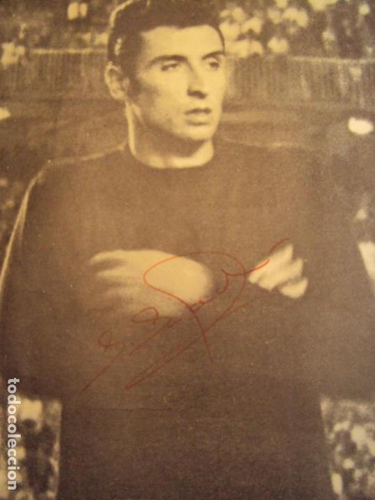 Coleccionismo deportivo: (F-190550)CARTEL C.F.BARCELONA CAMPEON DE ESPAÑA 1967-68 AUTOGRAFOS ORIGINALES - Foto 2 - 164114438