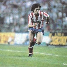 Coleccionismo deportivo: ATLÉTICO DE MADRID. RECORTE DE PAOLO FUTRE. Lote 199044673