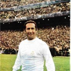 Coleccionismo deportivo: REAL MADRID: LÁMINA DE PACO GENTO. 1969. Lote 200368822