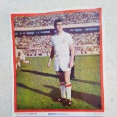 Coleccionismo deportivo: BERRUEZO DEL SEVILLA C.F, CARTEL ( 32.50 X 22.50 ). Lote 230930470