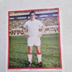 Coleccionismo deportivo: HITA DEL SEVILLA C.F, CARTEL ( 32.50 X 22.50 ). Lote 230931580