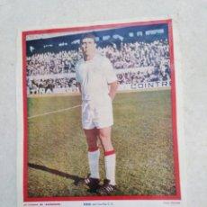 Coleccionismo deportivo: TONI DEL SEVILLA C.F, CARTEL ( 32.50 X 22.50 ). Lote 230932550