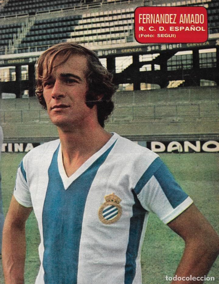 RCD. ESPAÑOL: PÓSTER DE FERNÁNDEZ AMADO.1975 (Coleccionismo Deportivo - Carteles de Fútbol)