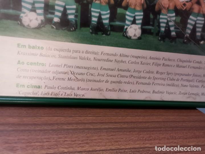 Coleccionismo deportivo: Poster emoldurado do Sporting Club de POrtugal SCP 1994/95 - Foto 2 - 246009725