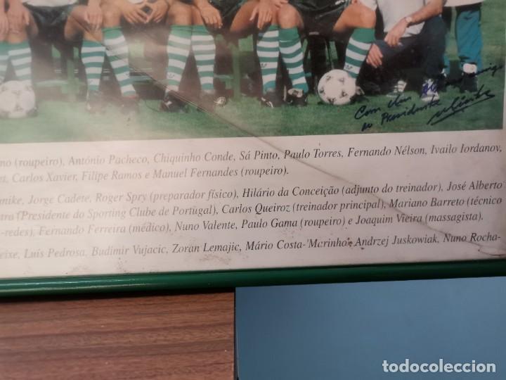 Coleccionismo deportivo: Poster emoldurado do Sporting Club de POrtugal SCP 1994/95 - Foto 3 - 246009725