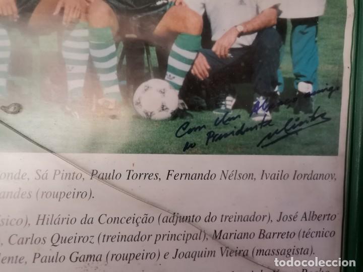 Coleccionismo deportivo: Poster emoldurado do Sporting Club de POrtugal SCP 1994/95 - Foto 4 - 246009725