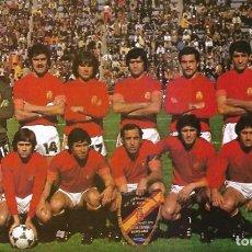 Coleccionismo deportivo: SELECCIÓN ESPAÑOLA DE FÚTBOL: GRAN RECORTE DE UN EQUIPO DE 1978. Lote 255978045