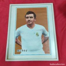 Coleccionismo deportivo: POSTER MUÑOZ ENMARCADO (2820/21). Lote 262187185