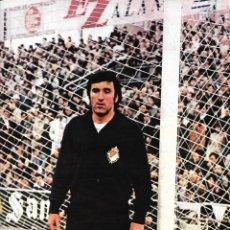 Coleccionismo deportivo: REAL VALLADOLID: PÓSTER DE LLACER. 1975. Lote 270245488