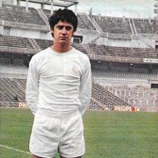 Coleccionismo deportivo: REAL MADRID: PÓSTER DE TOURIÑO. 1975. Lote 270245863