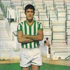 Coleccionismo deportivo: REAL BETIS BALOMPIÉ: PÓSTER DE ROGELIO. 1975. Lote 270246678