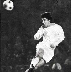 Coleccionismo deportivo: REAL MADRID: GRAN RECORTE DE SANTILLANA. 1975. Lote 270254898