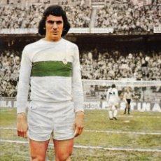 Collectionnisme sportif: ELCHE CF: PÓSTER DE GÓMEZ VOGLINO.1975. Lote 274874568