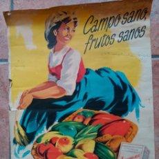 Carteles: CARTEL AGRONEXA 49´5 X 70 CM. Lote 46126943