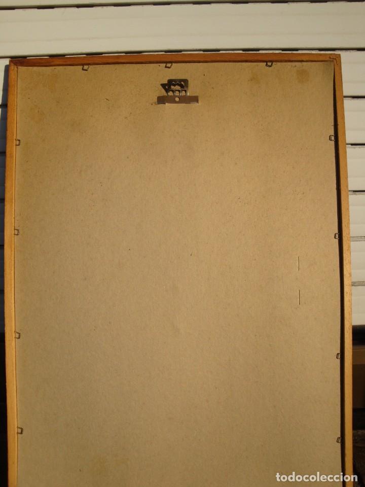 Carteles: GORDONS - Foto 2 - 195308182