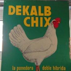 Carteles: CHAPA PUBLICITARIA, PONEDORAS DE GALLINAS, DEKALB, BUEN TAMAÑO, PERFECTA. Lote 205823122