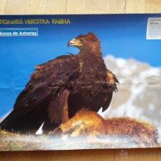 Carteles Publicitarios: CARTEL BANCO DE ASTURIAS,AGUILA REAL DE 63 X 45 CMS. Lote 43379111