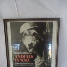 Carteles Publicitarios: CARTEL ENMARCADO ANIMALS IN WARS . EXPOSICIÓN DEL MUSEO IMPERIAL WAR MUSEUM.1984. Lote 48414071