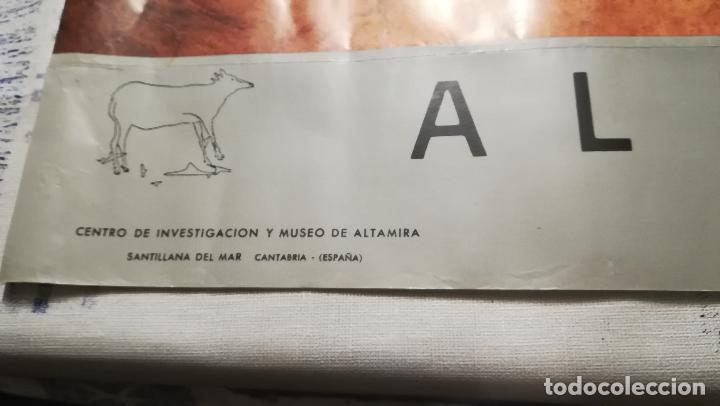 Carteles Publicitarios: CARTEL LITOGRAFIA DE - DIBUJO DE CUEVA DE ALTAMIRA - MINISTERIO DE CULTURA AÑO 1989 TAMAÑO 70X50 CMS - Foto 3 - 143761262
