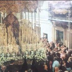 Carteles de Semana Santa: SEMANA SANTA SEVILLA CARTEL 1981 48,5 X 67. Lote 87626972