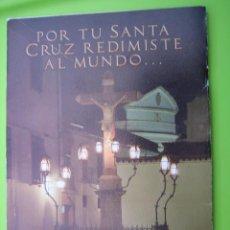 Carteles de Semana Santa: PROGRAMA VÍA CRUCIS MAGNO DE LA FE. CÓRDOBA 2013. Lote 125904015