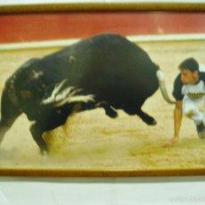 Carteles Toros: FOTOGRAFIA DE MIGUEL(FIRMADO) FRENTE AL TORO 2005, ESTELLA, ENMARCADO. Lote 56163740