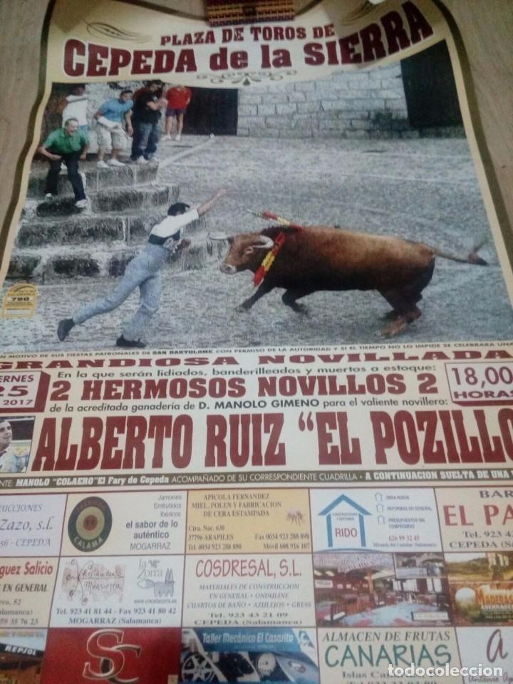 CARTEL TOROS CEPEDA DE LA SIERRA ANTONIO ROSALES (Coleccionismo - Carteles Gran Formato - Carteles Toros)