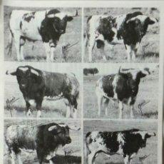 Carteles Toros: CARTEL PLAZA DE TOROS DE MADRID 2002. Lote 109110907