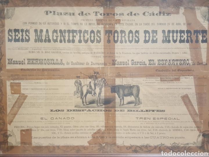 Carteles Toros: Cartel plaza de toros de Cádiz. 1887. El Espartero y Manuel Hermosilla. - Foto 2 - 171999360