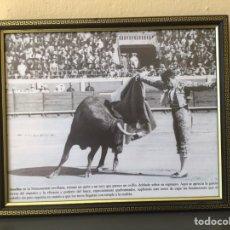 Carteles Toros: JOSELITO EL GALLO. SU ELEGANCIA Y MAESTRÍA. Lote 222656981