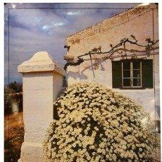 Carteles de Turismo: MENORCA. CASA DE POSSESIO. 1986. 57 X 80 CM. MENORCA. Lote 36160495