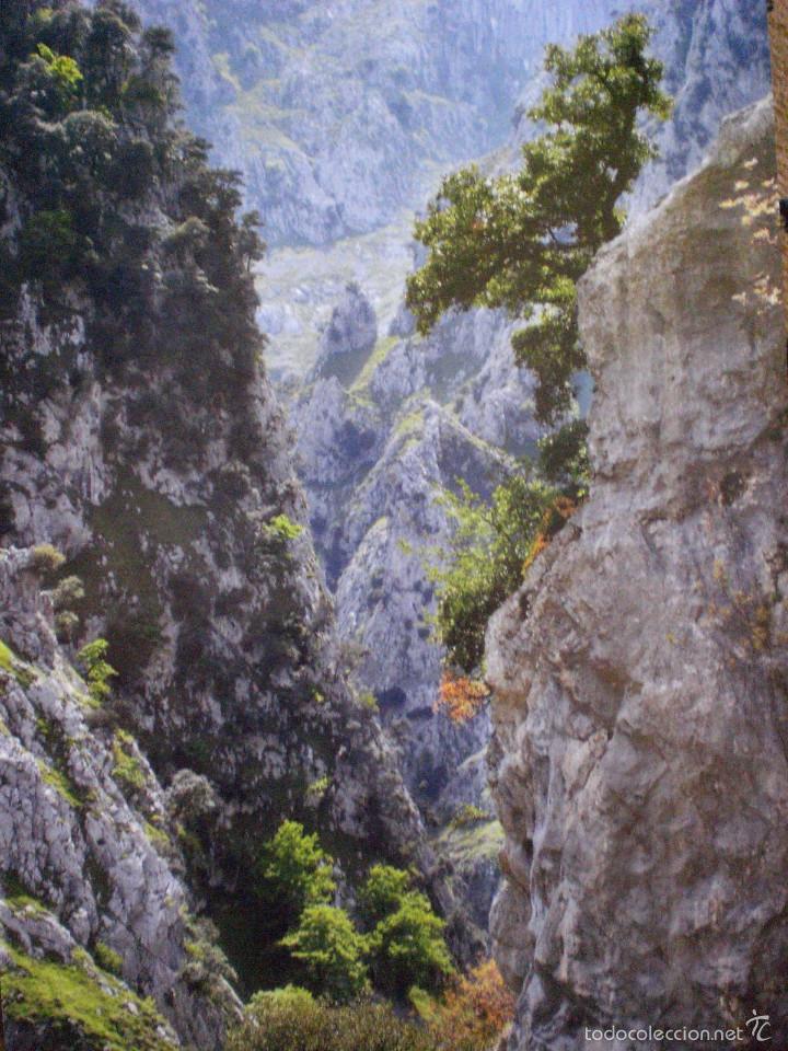 Carteles de Turismo: Láminas fotográficas de Asturias - Foto 2 - 57530901