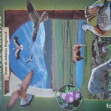 Carteles de Turismo: EXTREMADURA LLANOS DE CACERES Y SIERRA DE FUENTES. Lote 93949935